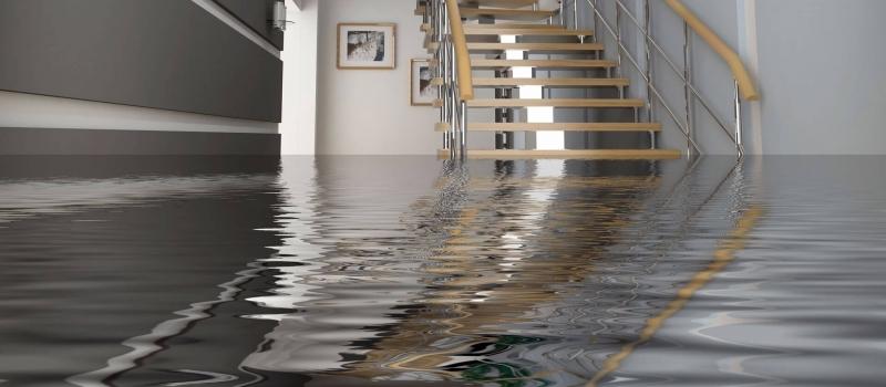 water damage restoration company in tyler